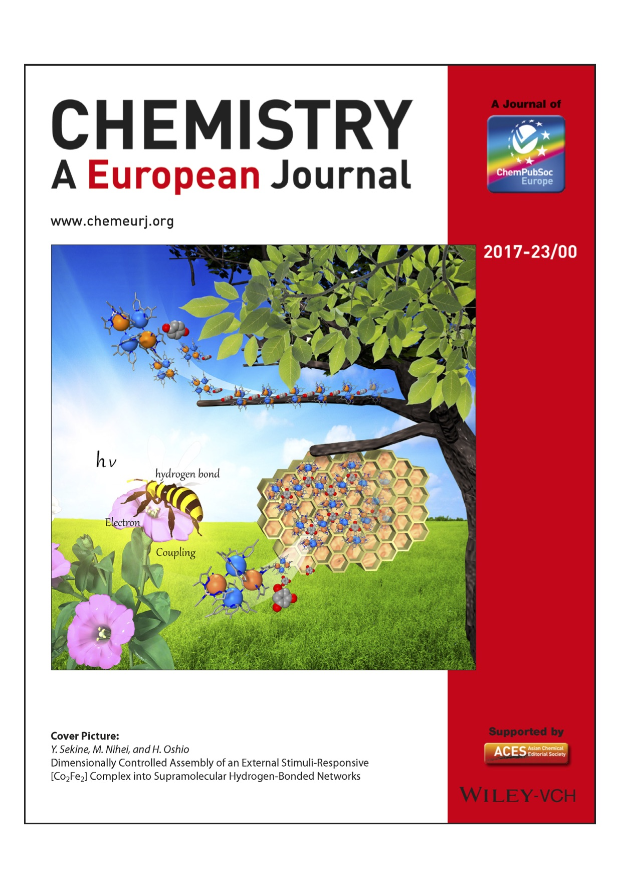nihei group s paper was selected as a cover picture of chem eur j